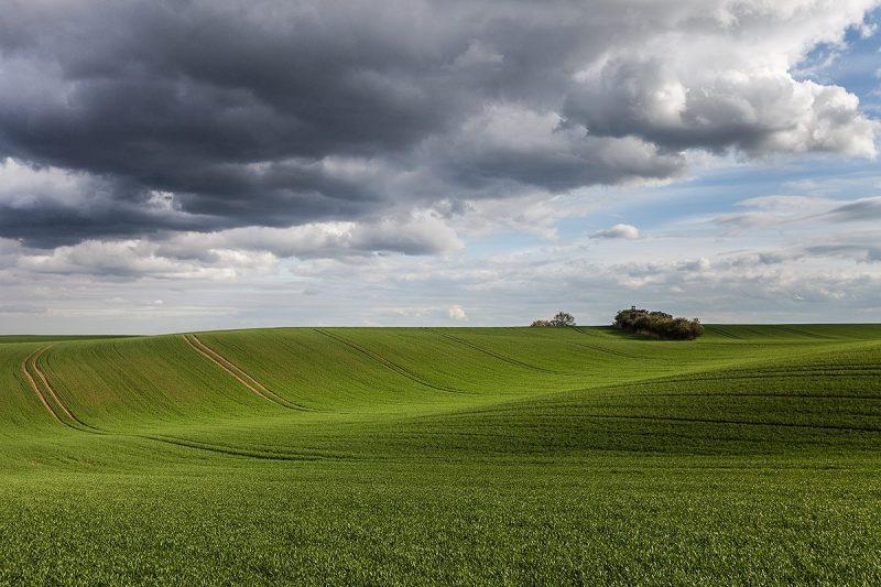 Śląska Toskania - Zielone fale pól w Zalesiu Śląskim