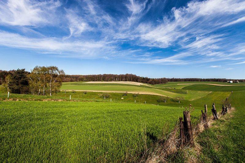 Pofalowane pola w Zalesiu Śląskim na wysokości osiedla Popice
