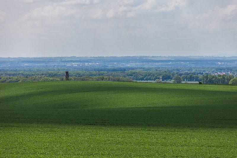 Widok na dolinę Odry